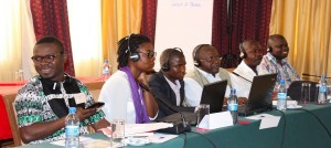 Sub-Saharan Africa Engaging and Collaborating on DFI Database